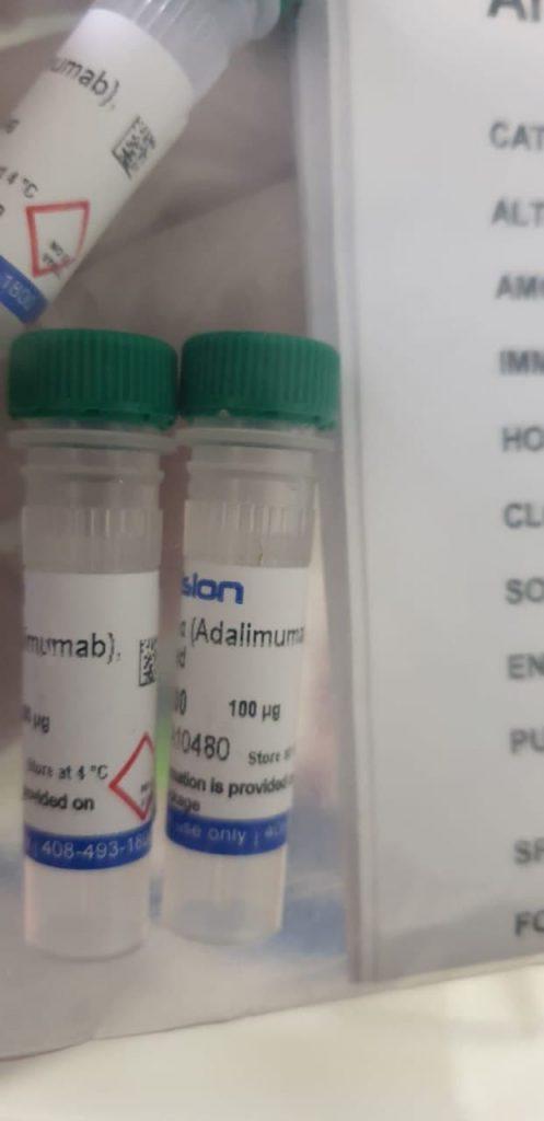 Biosynthesis of Bimetallic Au-Ag Nanoparticles Using Escherichia coli and its Biomedical Applications